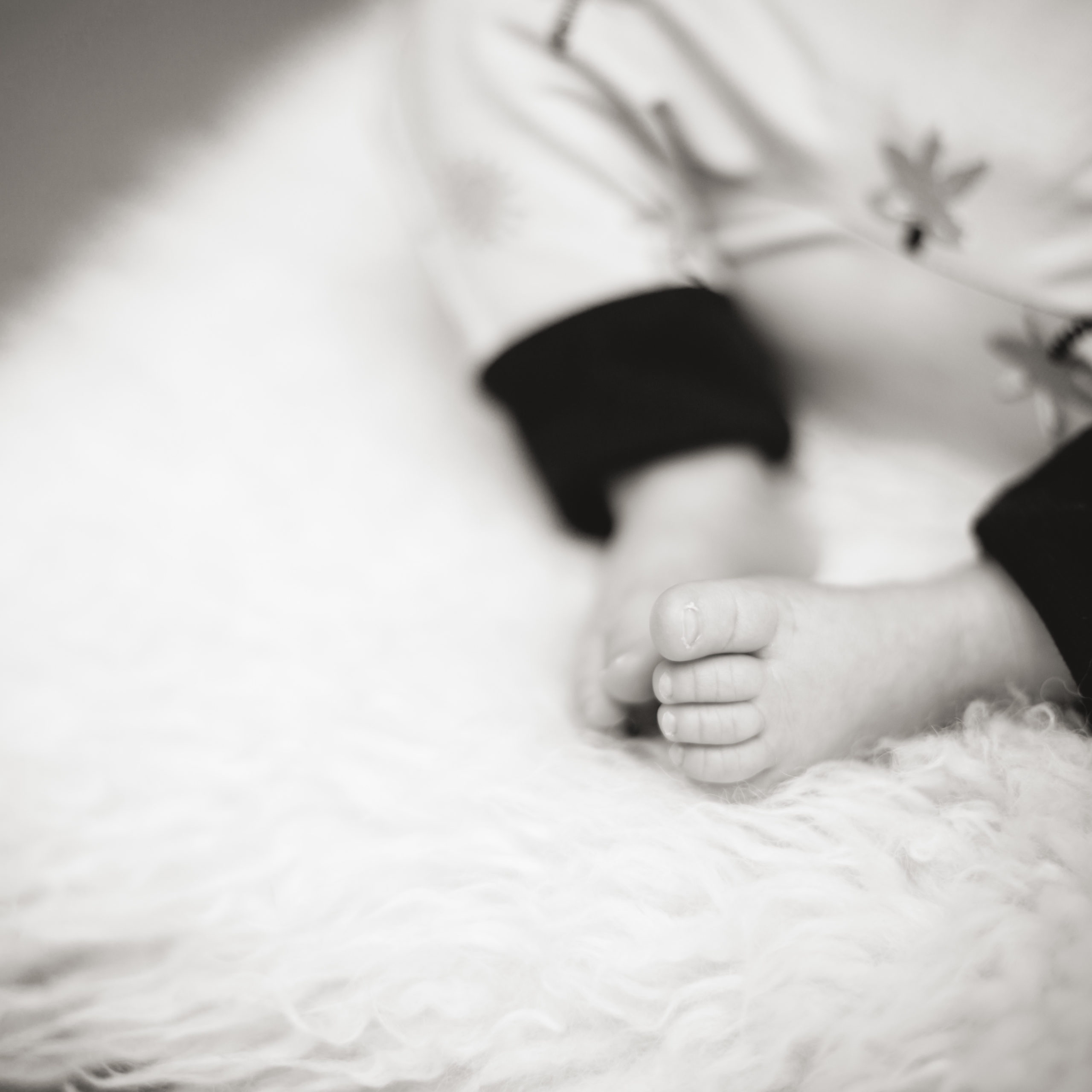 Elke Holzmann Fotografie Babyfoto